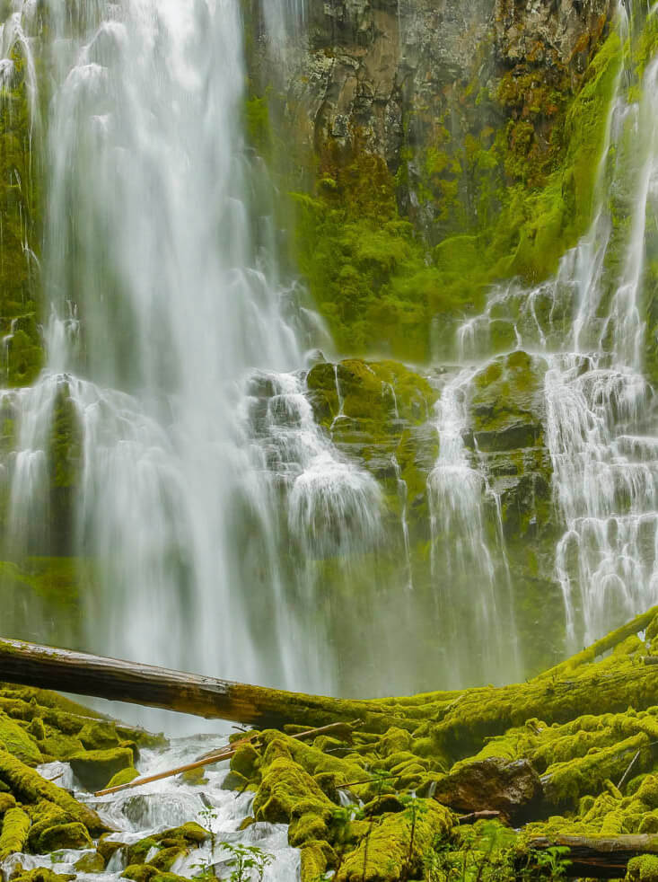 Lower Proxie falls on the McKenzie River in the Willamette Natio